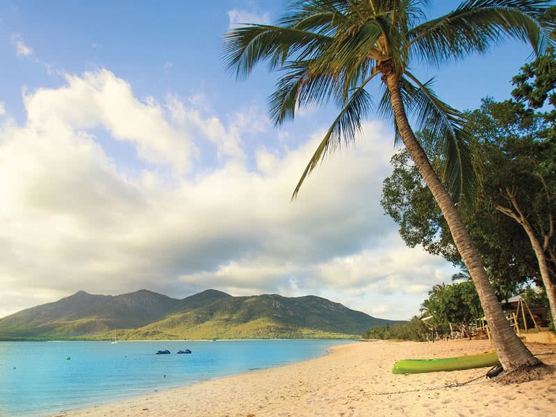 Hydeaway Bay beach at Montes Beach Resort, with palm trees overlooking Gloucester Island