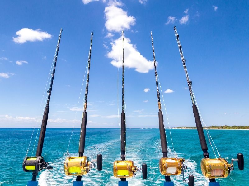 Multiple fishing rods displayed on the back of a motor vessel