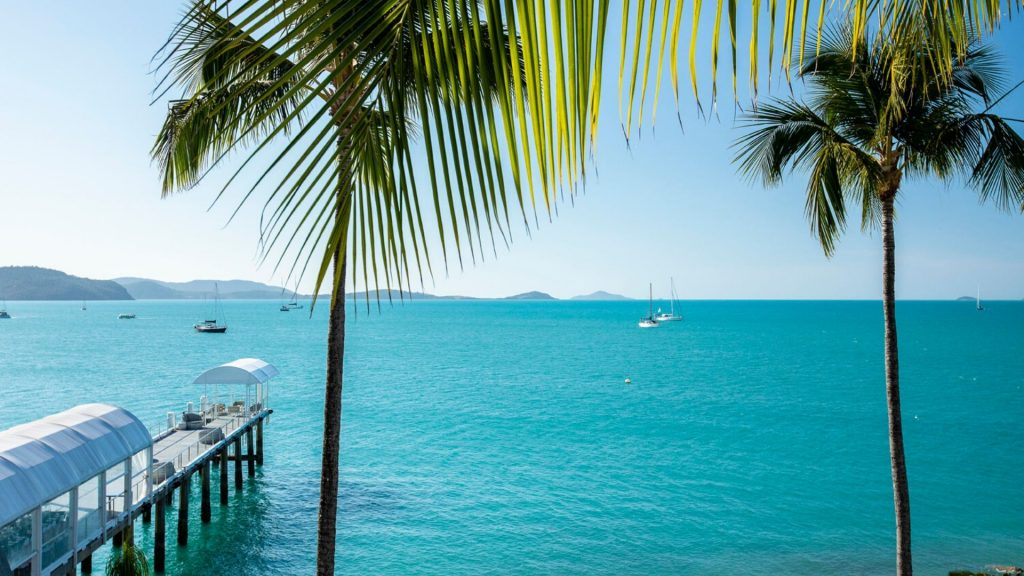 The private jetty and palm trees at the Coral Sea Resort Hotel, overlooking the Coral Sea